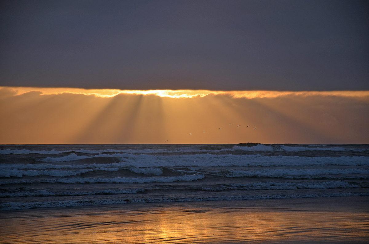 GASTBEITRAG: Gott ist jetzt nahe